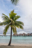 Μπανγκαλόου Bora Ταϊτή Bora overwater στοκ φωτογραφία με δικαίωμα ελεύθερης χρήσης