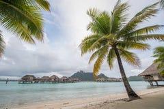 Μπανγκαλόου Bora Ταϊτή Bora overwater στοκ εικόνες