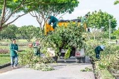 ΜΠΑΝΓΚΟΚ - 13 Οκτωβρίου άνδρας και γυναίκες που εργάζονται για να κόψει και να κινήσει το δέντρο από πίσω Στοκ Φωτογραφίες