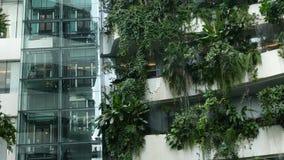 ΜΠΑΝΓΚΟΚ, ΤΑΪΛΑΝΔΗ - 18 ΔΕΚΕΜΒΡΊΟΥ 2018 το Emquartier - εμπορικό κέντρο πολυτέλειας Σχέδιο της λεωφόρου σε πράσινο περιβαλλοντικά απόθεμα βίντεο