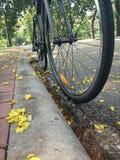 ΜΠΑΝΓΚΟΚ ΤΑΪΛΑΝΔΗ - τον Απρίλιο του 2015: Ποδήλατο κινηματογραφήσεων σε πρώτο πλάνο στο πάρκο Lumpini στις 11 Απριλίου 2015 στη Μ Στοκ Εικόνες