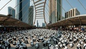 Μπανγκόκ, Ταϊλάνδη - 8 Μαρτίου 2016: στρατόπεδο Mache Pandas 1600 εγγράφου Στοκ εικόνα με δικαίωμα ελεύθερης χρήσης