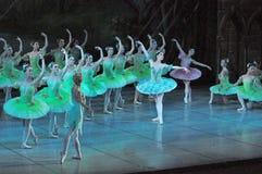 Μπαλέτο του Don Quichotte Στοκ εικόνα με δικαίωμα ελεύθερης χρήσης