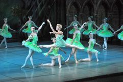 Μπαλέτο του Don Quichotte Στοκ φωτογραφίες με δικαίωμα ελεύθερης χρήσης