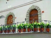 Μπαλκόνι με τα λουλούδια στοκ εικόνα με δικαίωμα ελεύθερης χρήσης