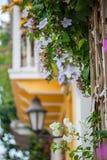 Μπαλκόνι στην Καρχηδόνα de Indias Στοκ Εικόνες