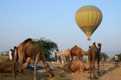 Μπαλόνι ζεστού αέρα που πετά πέρα από το φυλετικό στρατόπεδο καμηλών νομάδων, Ινδία Στοκ Εικόνες