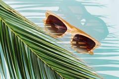 Μπεζ γυαλιά ηλίου τοπ άποψης στο φύλλο φοινικών αντικείμενο έννοιας ταξιδιού στοκ φωτογραφία με δικαίωμα ελεύθερης χρήσης