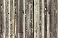 Μπεζ ξύλινη σύσταση Άνευ ραφής σχέδιο επιτροπών υποβάθρου ελαφρύ παλαιό ξύλινο Στοκ εικόνα με δικαίωμα ελεύθερης χρήσης
