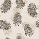 Μπεζ σχέδιο φτερών Στοκ Εικόνες
