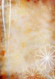 μπεζ floral grunge ανασκόπησης παλα&io απεικόνιση αποθεμάτων