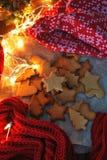 Μπισκότα αστεριών Χριστουγέννων Στοκ εικόνες με δικαίωμα ελεύθερης χρήσης