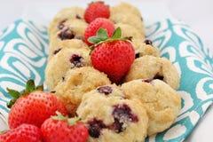 Μπισκότα βακκινίων με τις φράουλες στοκ εικόνα