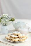 Μπισκότα βανίλιας Στοκ φωτογραφία με δικαίωμα ελεύθερης χρήσης