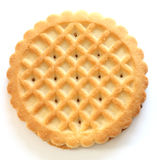 μπισκότα βουτύρου κουλ& Στοκ Εικόνα