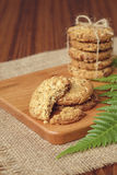 Μπισκότα βρωμών και σταφίδων με το γάλα στοκ εικόνες με δικαίωμα ελεύθερης χρήσης