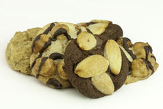 μπισκότα γαστρονομικά Στοκ Φωτογραφίες