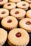 μπισκότα για πάντα Στοκ Εικόνες