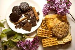 Μπισκότα και σοκολάτα 04 Στοκ Εικόνες