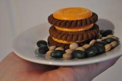 Μπισκότα και χάπια διατροφής στοκ εικόνες