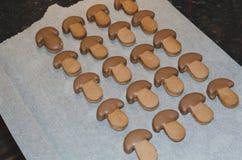 Μπισκότα κακάου σε μια μορφή των μανιταριών στοκ εικόνες