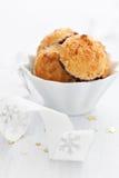 Μπισκότα καρύδων Στοκ εικόνα με δικαίωμα ελεύθερης χρήσης