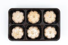 μπισκότα μερικά στοκ εικόνες