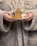 Μπισκότα μελοψωμάτων εκμετάλλευσης Στοκ Φωτογραφίες