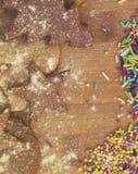 Μπισκότα μελοψωμάτων Χριστουγέννων Hommade - μαλακή εστίαση στο αστέρι μπισκότων Στοκ Εικόνες