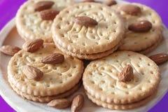 Μπισκότα με τα αμύγδαλα και τη σοκολάτα Στοκ Φωτογραφία