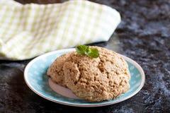 Μπισκότα με τα σιτάρια: oatmeal, δημητριακά στοκ φωτογραφία με δικαίωμα ελεύθερης χρήσης