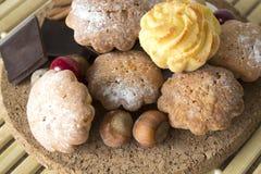 Μπισκότα με τα τα βακκίνια, τα καρύδια και τη σοκολάτα Στοκ Φωτογραφία