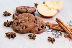 Μπισκότα με την κανέλα, το μήλο και το γλυκάνισο Στοκ φωτογραφία με δικαίωμα ελεύθερης χρήσης