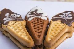 Μπισκότα με το ζωηρόχρωμο λούστρο Γλυκά υπό μορφή παγωτού Διακοπές για τα παιδιά Εύγευστα σπιτικά μπισκότα Στο α στοκ εικόνες
