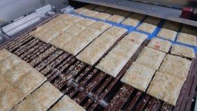 Μπισκότα, μπισκότα στο μεταφορέα Μηχανοποιημένη παραγωγή των προϊόντων αρτοποιίας απόθεμα βίντεο