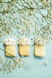 Μπισκότα Πάσχας 2 όλα τα αυγά Πάσχας έννοιας νεοσσών κάδων ανθίζουν τη χλόη χρωμάτισαν τις τοποθετημένες νεολαίες Άνοιξη Στοκ Φωτογραφία