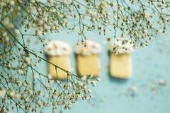 Μπισκότα Πάσχας 2 όλα τα αυγά Πάσχας έννοιας νεοσσών κάδων ανθίζουν τη χλόη χρωμάτισαν τις τοποθετημένες νεολαίες Άνοιξη Στοκ φωτογραφίες με δικαίωμα ελεύθερης χρήσης