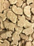 Μπισκότα παντού Στοκ Εικόνες