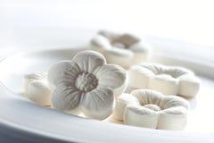 Μπισκότα παραδοσιακού κινέζικου Στοκ εικόνα με δικαίωμα ελεύθερης χρήσης