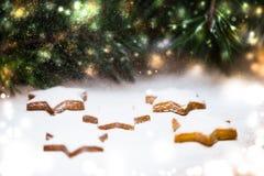Μπισκότα πιπεροριζών και κομψοί κλάδοι Χιονισμένο kartika, Chris Στοκ φωτογραφίες με δικαίωμα ελεύθερης χρήσης