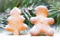 Μπισκότα πιπεροριζών και κομψοί κλάδοι Χιονισμένο kartika, Chris Στοκ εικόνα με δικαίωμα ελεύθερης χρήσης
