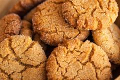 Μπισκότα πιπεροριζών μελιού Στοκ φωτογραφίες με δικαίωμα ελεύθερης χρήσης