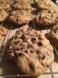 μπισκότα που δροσίζουν τ&o στοκ εικόνα με δικαίωμα ελεύθερης χρήσης