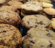 Μπισκότα, πρόσφατα ψημένα μπισκότα στοκ εικόνες