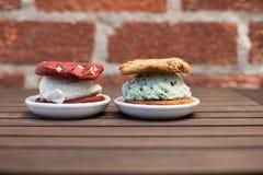 Μπισκότα σάντουιτς παγωτού Στοκ Φωτογραφία