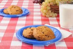 Μπισκότα σε έναν picnic πίνακα στοκ εικόνα με δικαίωμα ελεύθερης χρήσης