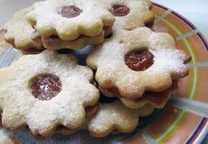 Μπισκότα σε ένα ζωηρόχρωμο πιάτο Στοκ εικόνα με δικαίωμα ελεύθερης χρήσης
