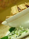 Μπισκότα σε ένα πιάτο σε ένα πιατάκι και ένα κεράσι πουλιών Στοκ Φωτογραφίες