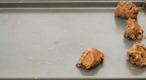 μπισκότα σοκολάτας τσιπ άψητα Στοκ εικόνα με δικαίωμα ελεύθερης χρήσης