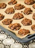 μπισκότα σοκολάτας σπιτ&iot Στοκ εικόνες με δικαίωμα ελεύθερης χρήσης